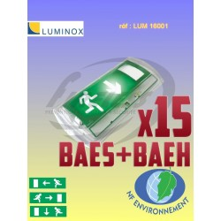 Pack bloc de secours BAES+BAEH LUMINOX x15