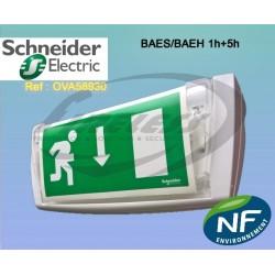 Bloc de secours BAES-BAEH 1h+5h Schneider SATI