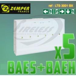 Pack bloc de secours BAES BAEH SATI LEDs ZEMPER x5