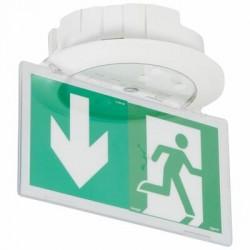 BAES+BAEH d'évacuation encastré à LEDs LEGRAND