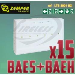 Pack bloc de secours BAES BAEH SATI LEDs ZEMPER x15