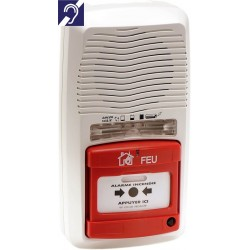 Alarme Type 4 autonome avec Flash